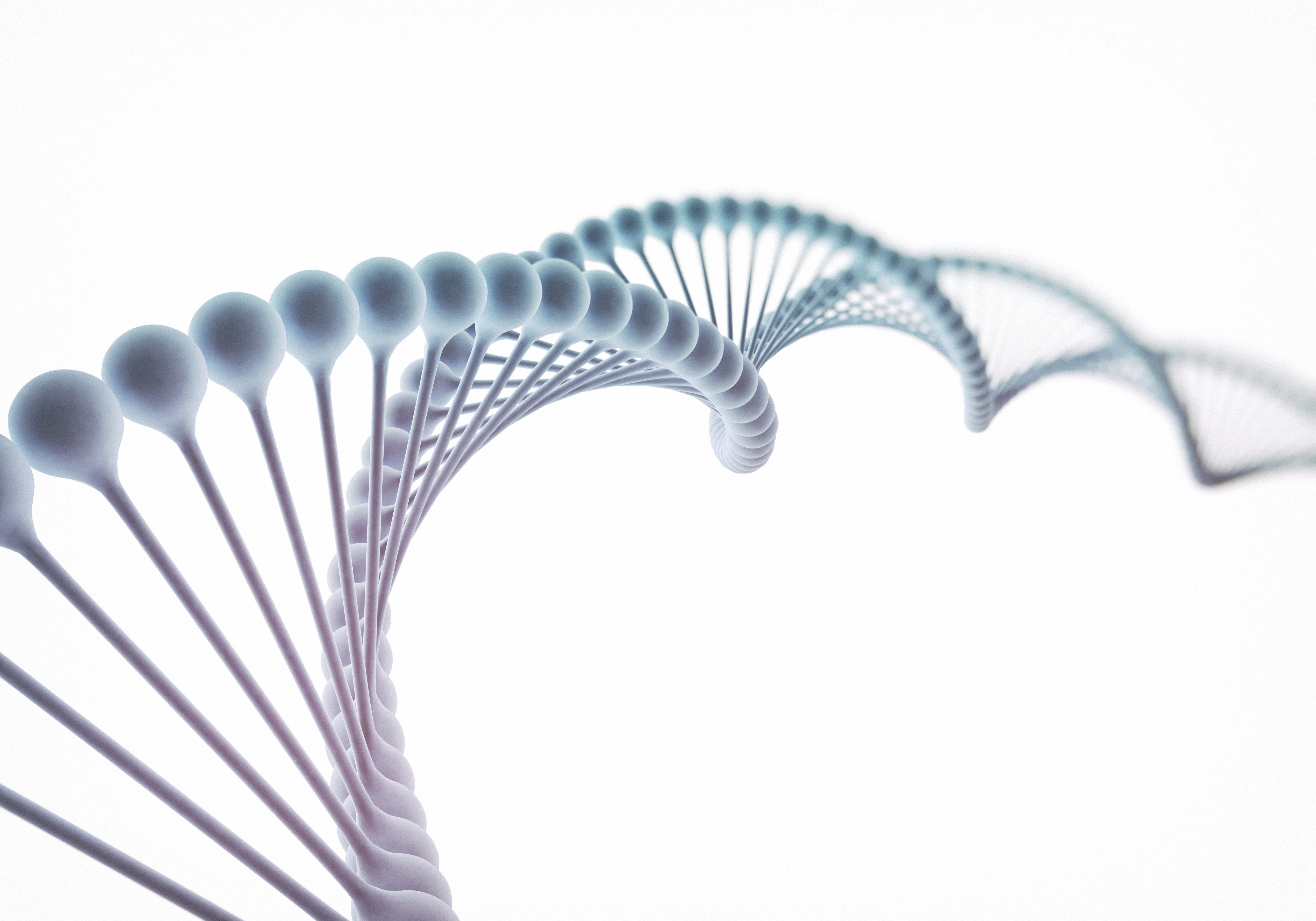 DNA isolated on white